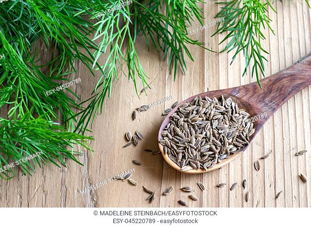 Dill seeds on a spoon, with fresh leaves in the background