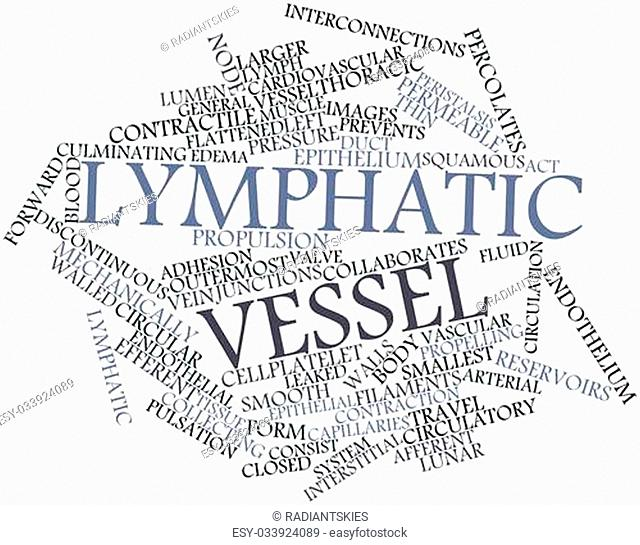 Abstract word cloud for Lymphatic vessel with related tags and terms
