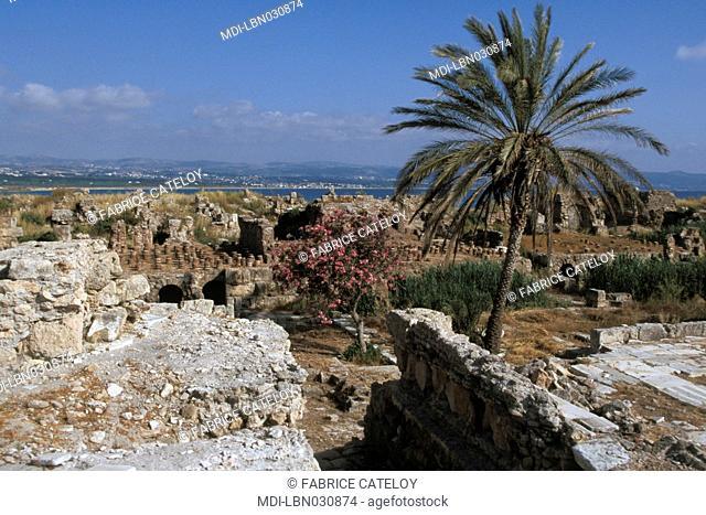 Lebanon - Tyr