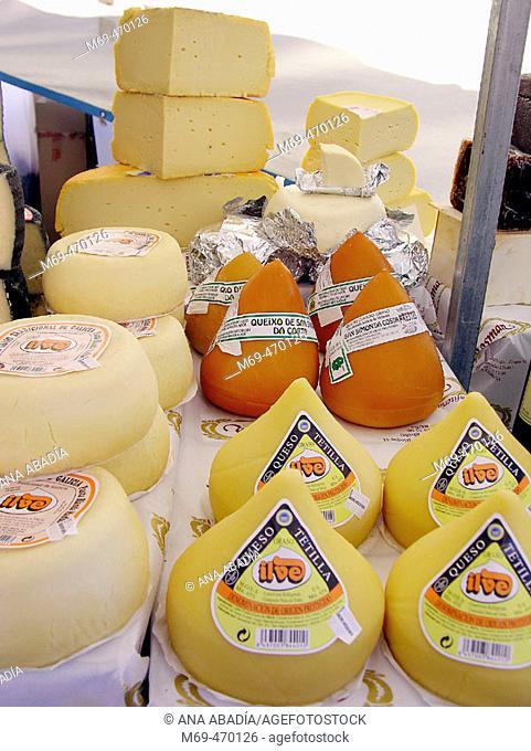 Galician cheeses for sale. Fira Avícola Raça Prat, El Prat de Llobregat, Barcelona province, Catalonia, Spain