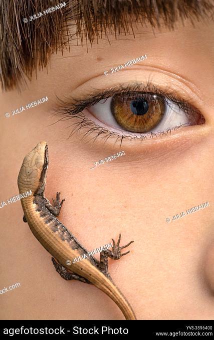 A juvenile lizard on a girl's face
