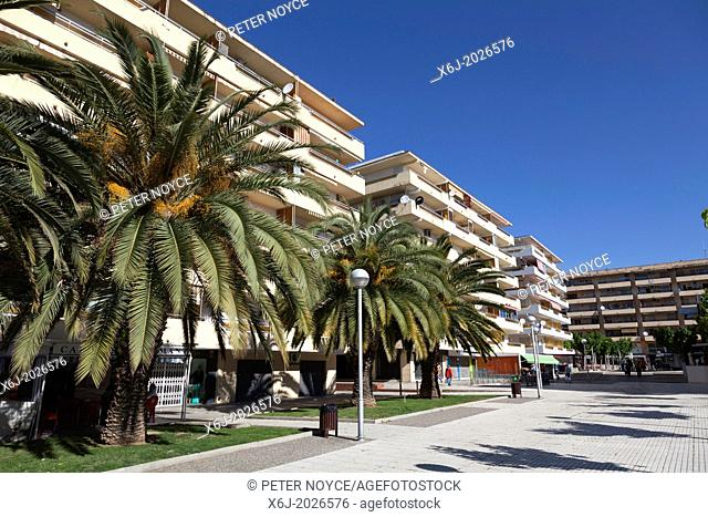 Apartment blocks and palm trees at Salou