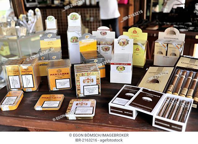 Selection of original Cuban cigars, tourist shop, Santa Clara, Cuba, Central America, America
