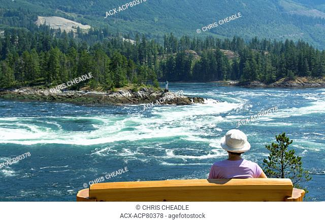 Skookumchuck Narrows, ebb tide Sechelt Inlet, Sunshine Coast, British Columbia, Canada