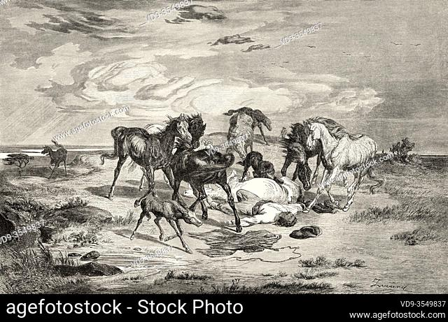 Horse stampede of the Russian steppes after a storm, Central Asia. Old 19th century engraved illustration, El Mundo Ilustrado 1880