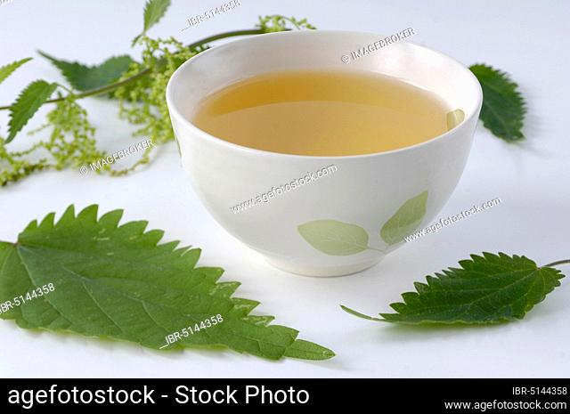 Cup with nettle tea and leaves (Urtica dioica)