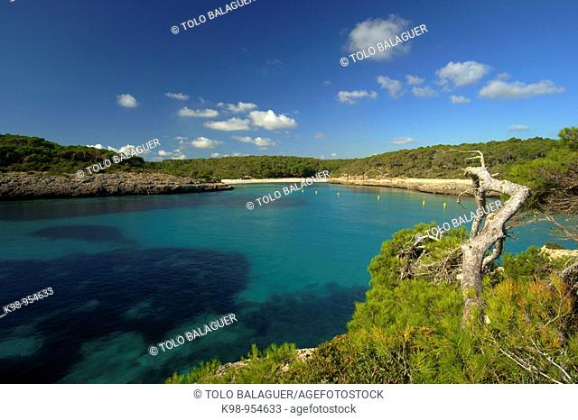 Mondrago Natural Park, Santanyi. Migjorn, Majorca, Balearic Islands, Spain