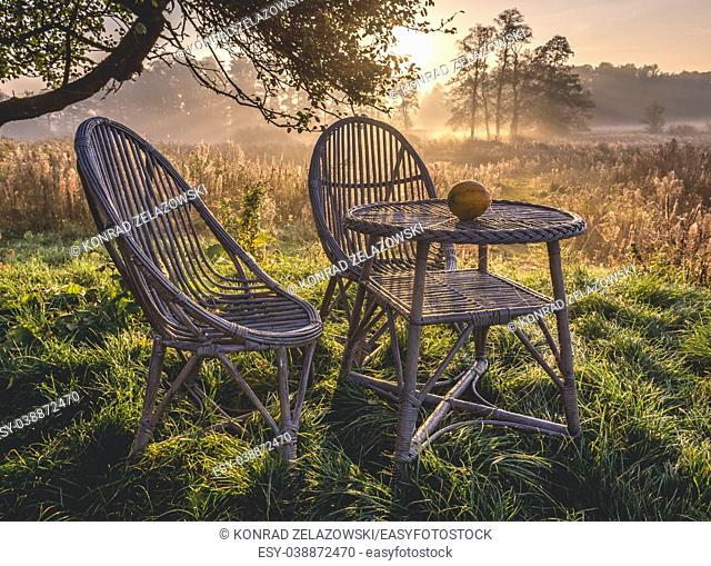 Morning in Gorki village, Sochaczew County on the edge of Kampinos Forest, large forests complex in Masovian Voivodeship of Poland