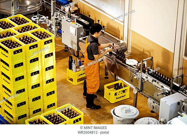 Worker standing next to yellow plastic crates with beer bottles in a brewery