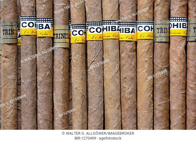 Cohiba cigars, rolled tobacco from Cuba