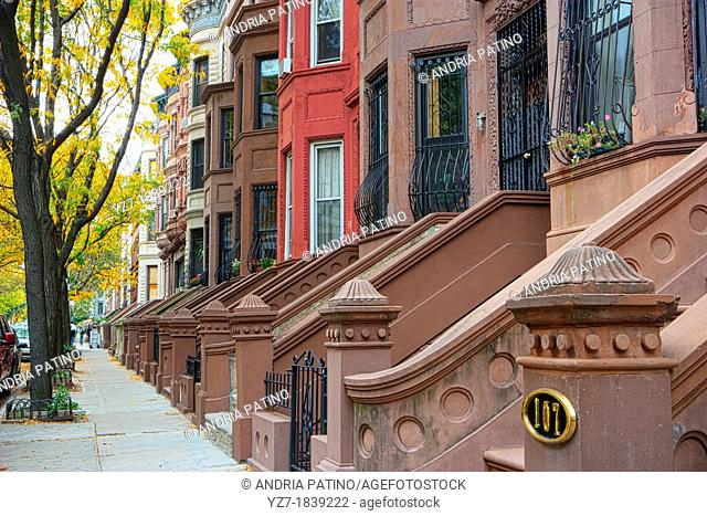 Harlem Row Houses in Autumn, New York City, New York, USA