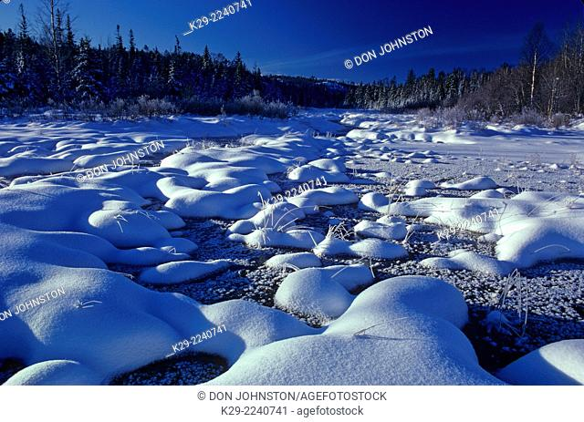 Fresh snow in a winter wetland, Greater Sudbury, Ontario, Canada
