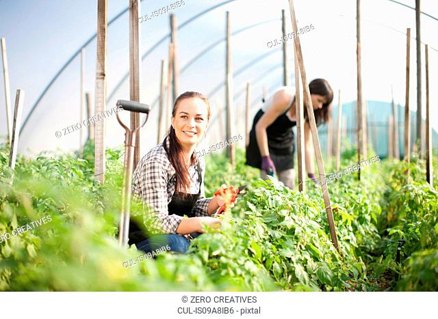 Young woman working at vegetable farm