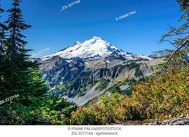 Mt Baker from Artist Point Trail, Mt Baker Scenic Byway,Snoqualmie National Forest, WashingtonUSA