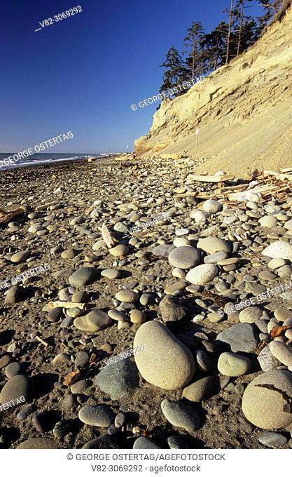Bluff cliffs over beach, Dungeness National Wildlife Refuge, Washington