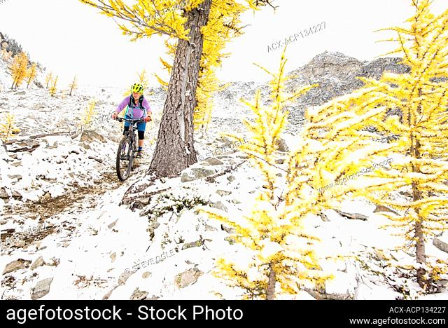 A woman rides her mountain bike along a snowy old mining trail in the Selkirk Mountains, British Columbia