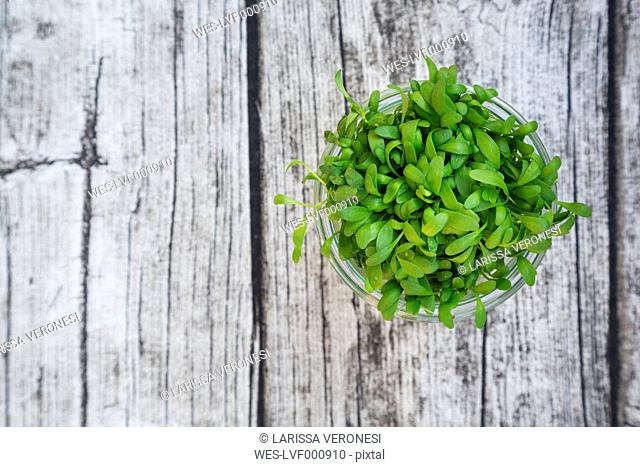 Glass of garden cress on grey wooden table, view from above