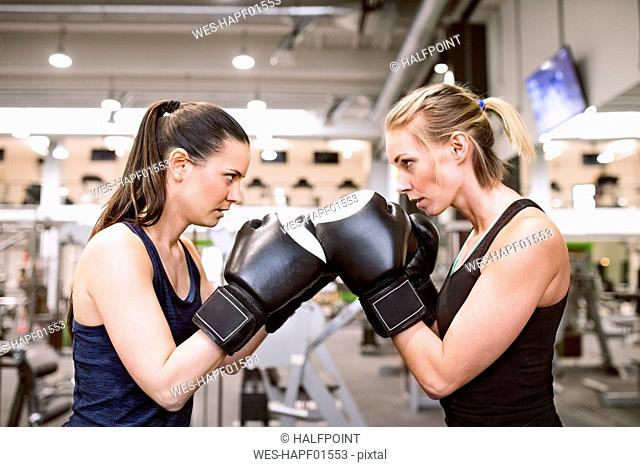 Young women boxing in gym