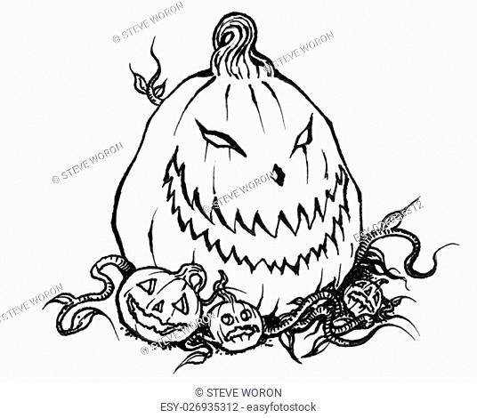 Scary Halloween Jack-o-Lantern Pumpkin in b&w line drawing illustration