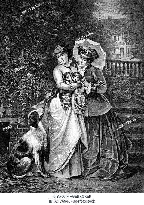 Women with puppies, historical engraving of 1883