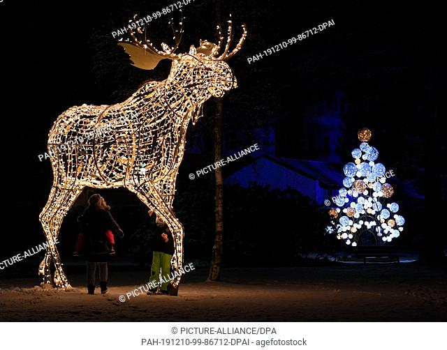 10 December 2019, Bavaria, Garmisch-Partenkirchen: Passers-by stand in front of a shining moose. More than 90000 LED's light up at Christmas time in the...