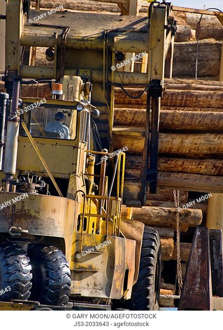 Massive log loader machine removing logs from big rig truck, to be loaded onto log ship for transport to China; Port of Port Angeles, Washington USA
