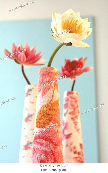 Water lilies in terry cloth vases