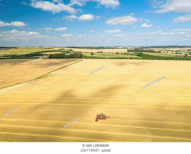 Harvest aerial of combine harvester cutting summer barley field crop with tractor trailer on farm