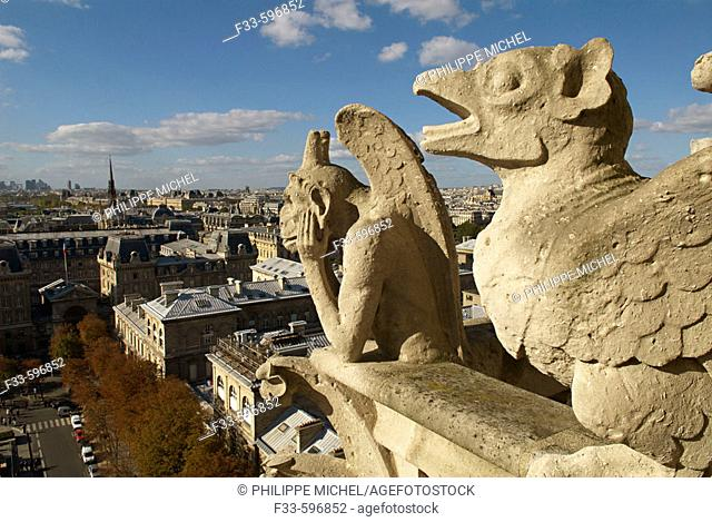 Notre Dame gargoyles overlooking Paris. France