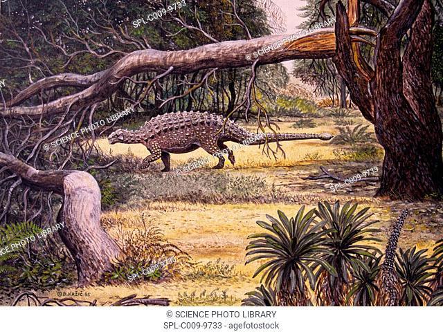 Pinacosaurus grangeri dinosaur, artwork. This herbivorous dinosaur lived in the Late Cretaceous period around 80 to 75 million years
