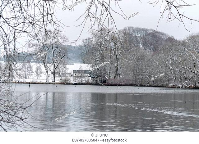 Small pond, lake in winter. Snow-covered trees in the background