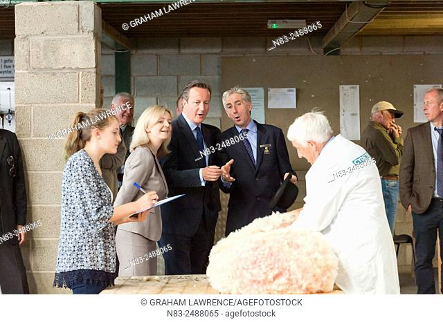 David Cameron and Liz Truss visit the sheep shearing shed. The Right Honourable David Cameron, Prime Minister of the United Kingdom and Liz Truss