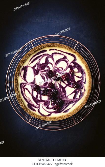 Honey blackberry swirl cheesecake
