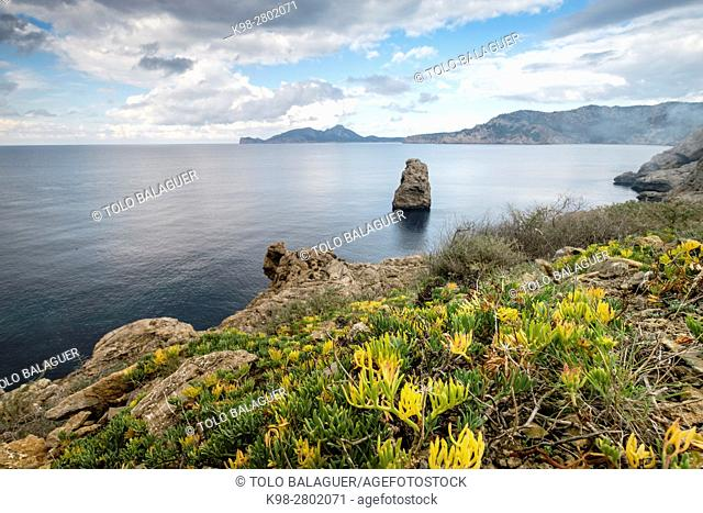 island in front of Mola cape, Andratx, region of the Sierra de Tramuntana, Mallorca, Spain