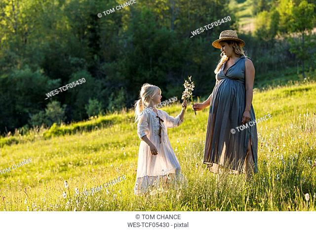 Pregnant mother and daughter on a meadow