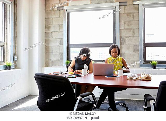 Two women sitting at meeting room table, using laptop, writing in notebook