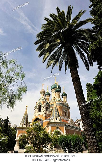 Russian Orthodox Cathedral, Nice, Alpes-Maritimes department, Provence-Alpes-Cote d'Azur region, southeast of France, Europe