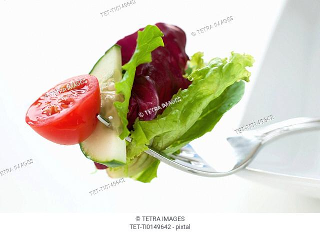 Fresh salad on fork