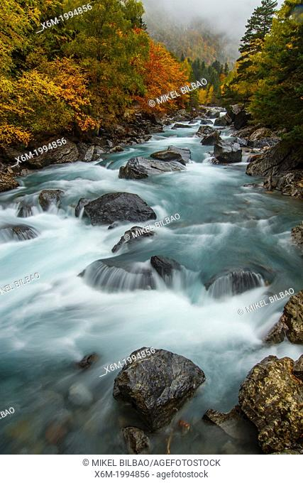 Ara river and mixed forest in autumn. Bujaruelo Valley. Huesca, Aragon, Spain, Europe