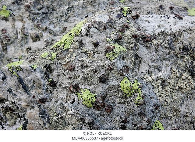 Map lichen on and garnets (Almandin) in the quartz stone, Seeberkar, Seeber valley, Ötztaler alps, South Tirol