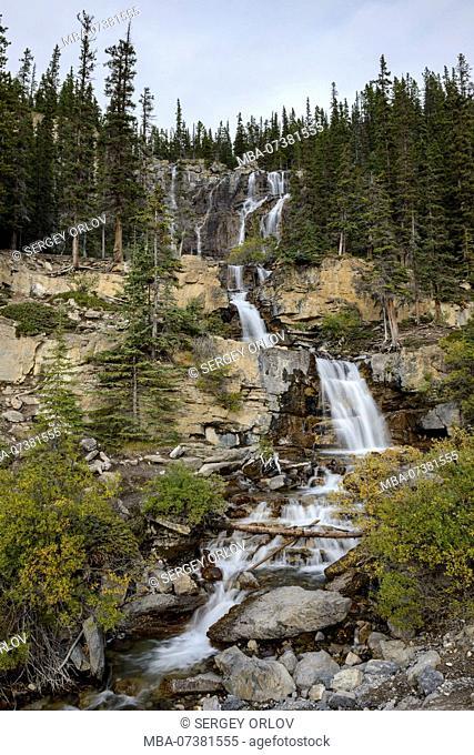 Jasper National Park, Tangle Creek Falls, vertical, waterfall, cascade, river
