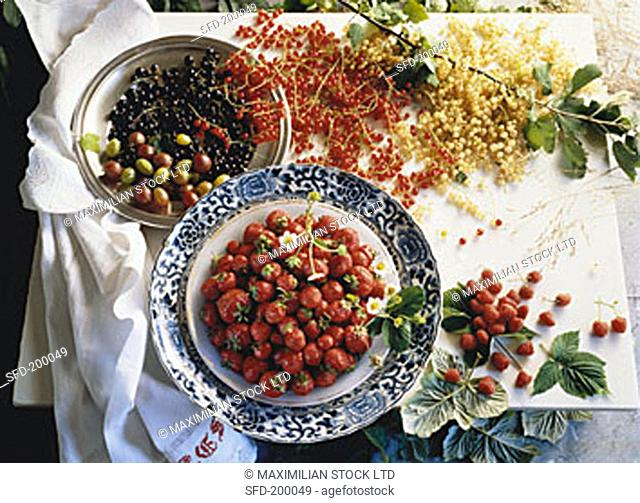 Assorted Berries in Bowls and on a Table
