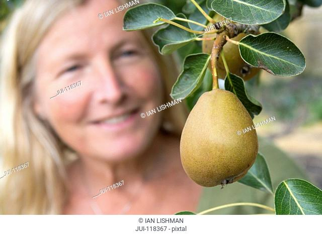 Mature Woman Looking At Pear Tree In Summer Garden