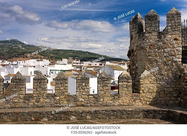 Panoramic from the Castle Palace of the Counts of Cabra (9th century). Cabra. Cordoba province. Region of Andalusia. Spain. Europe