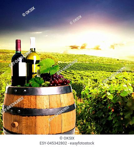 Bottles of wine on the oak barrel over vineyards on the background. Winery concept