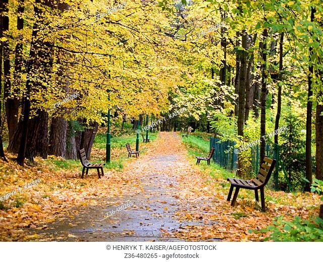 Park in Szczawnica,, Poland