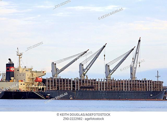 'Diamond Ocean' freighter loading raw logs in Nanaimo harbour, Vancouver Island, British Columbia