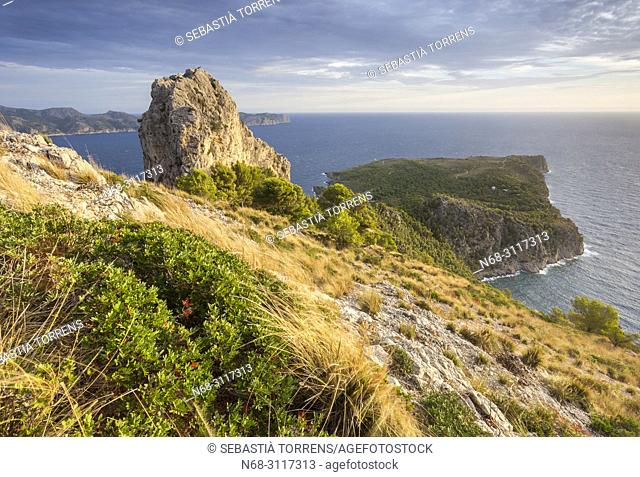 Peninsula of Alcudia, view of Penya Roja and Cap des Pinar, Majorca, Balearic Islands, Spain