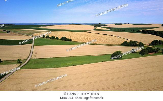 Field landscape near Merzkirchen, Saargau, Trier-Saarburg, Rhineland-Palatinate, Germany