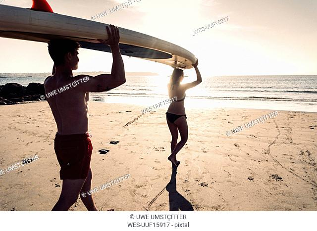 France, Brittany, young couple carrying an SUP board on the beach together